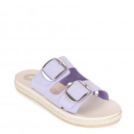 Ateneo 2705 Purple